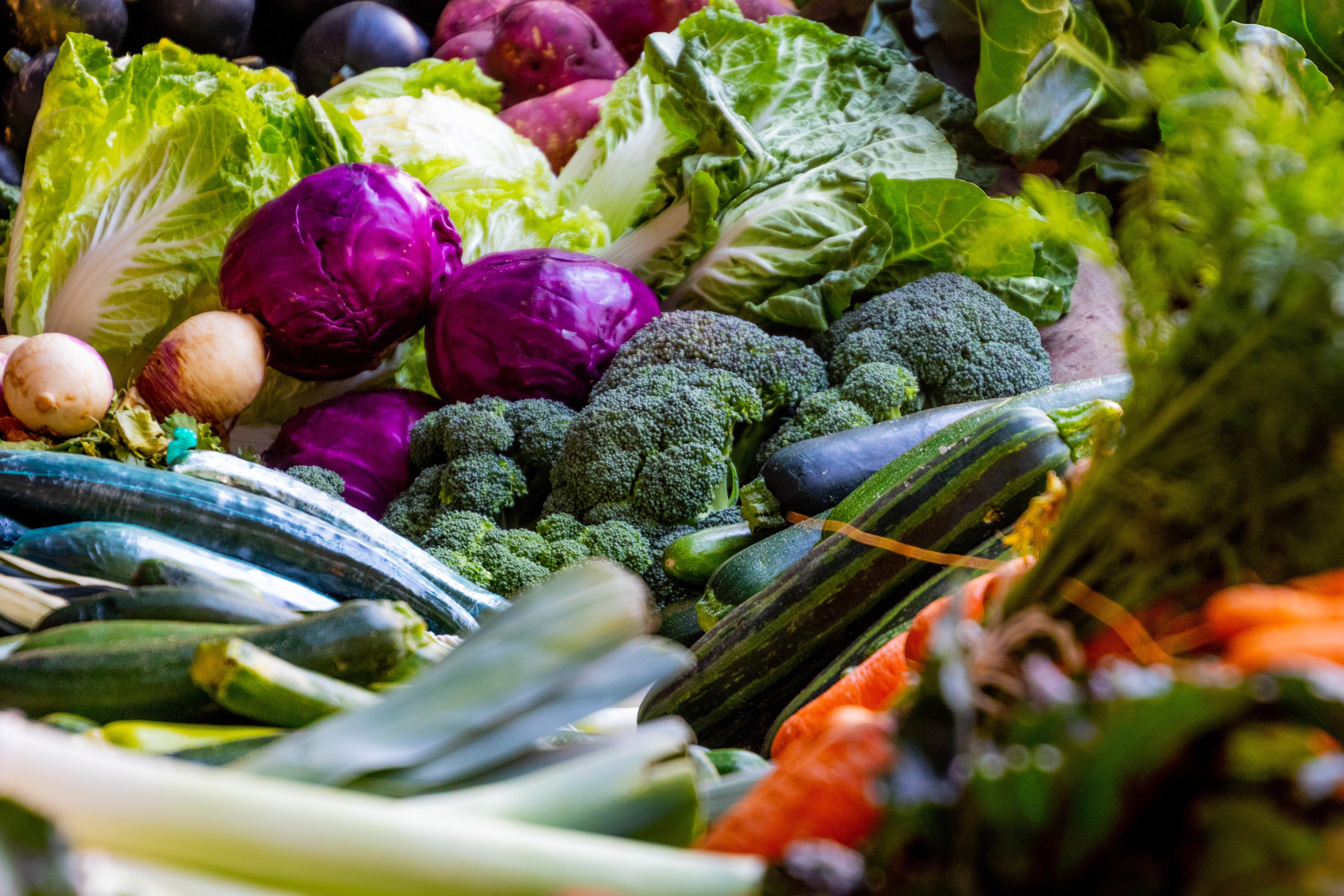 egészséges étredn, diéta