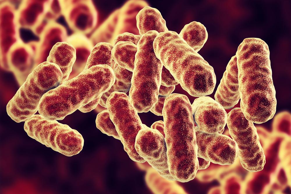 hüvelyi mikrobiom