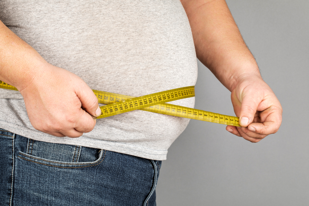 fehér zsír elhízás